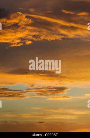 Central Asian sky at sunset - Stock Image