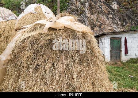 Haystack Lin village Albania - Stock Image