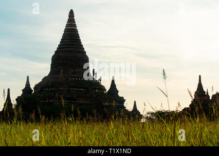Tourists stand half way up a ancient pagoda temple structure, Began, Myanmar. - Stock Image