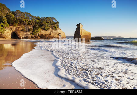 Smiling Sphinx rock near Cathedral Cove, Coromandel Peninsula, New Zealand - Stock Image