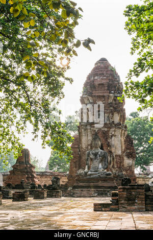 Buddha statue sitting position at front of pagoda under sun light surround by trees and ancient ruins of Wat Phra - Stock Image