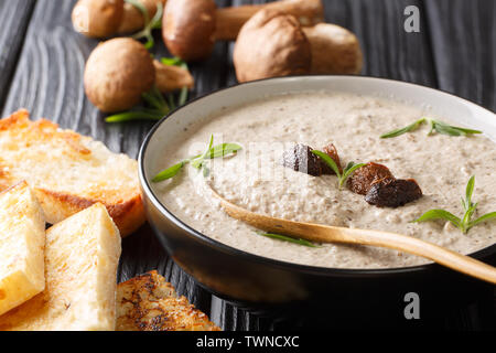 Fragrant soup with fresh porcini mushrooms and thyme close-up in a bowl served with toast on the table. horizontal - Stock Image