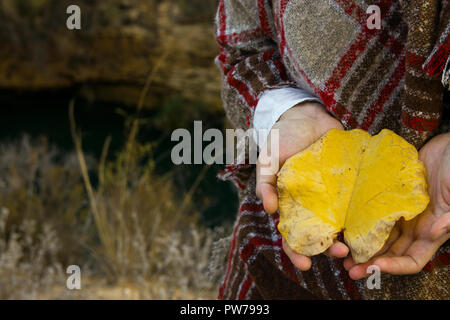 Young caucasian woman in checkered wool plaid holds in hand bright yellow leaf in field meadow. Cozy autumn atmosphere. Beautiful landscape. Warm eart - Stock Image
