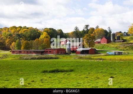 Farm in the Berkshires Great Barrington, Massachusetts - Stock Image