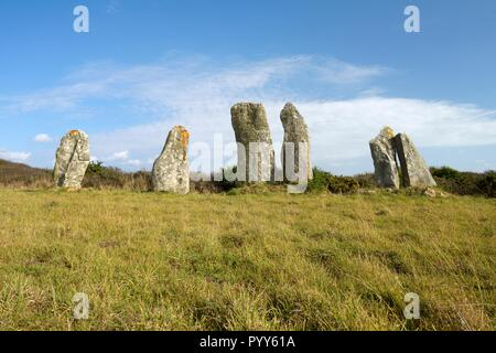 The massive prehistoric megalithic stone alignment standing stones of Vieux Moulin. Plouharnel, Brittany, France - Stock Image