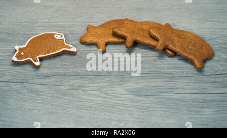 Fragrant gingerbread piggy for good luck on wood background. Pig shaped cookies with one individual independent leader. Concept of success, leadership. - Stock Image
