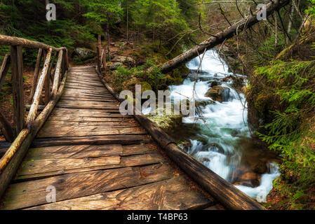 Wooden bridge in the forest. Canyon of waterfalls in Rhodopes mountain, Bulgaria. - Stock Image