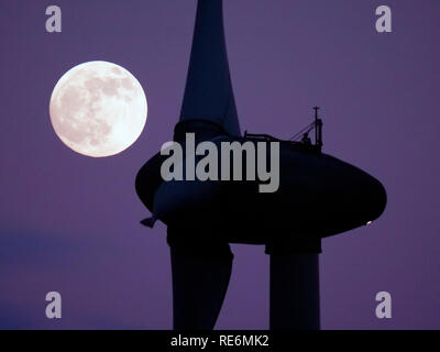 Peak District, UK. 20th Jan, 2019. Full Blood Wolf Super Moon rising over wind turbines at Griffe Grange near Wirksworth, Derbyshire Dales, Peak District, UK Credit: Doug Blane/Alamy Live News - Stock Image