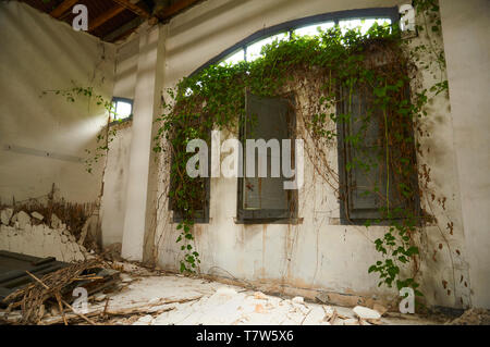 Interior of ruined facilities in the abandoned Canfranc International railway station taken over by plants (Canfranc, Pyrenees, Huesca, Aragon, Spain) - Stock Image