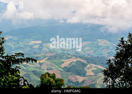 High angle view landscape of cultivated land in northern Thailand - Stock Image