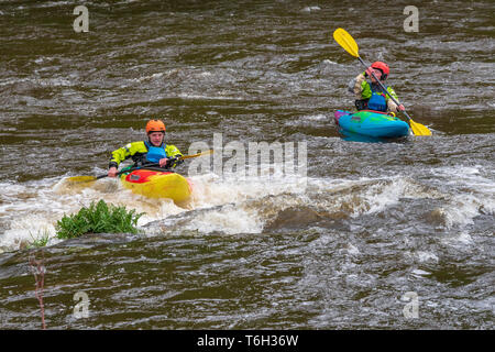 Kyakers, conoeists, whitewater, rapids - Stock Image