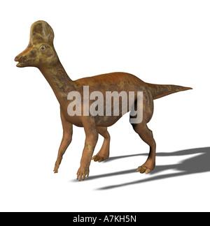 Corythosaurus dinosaur - Stock Image