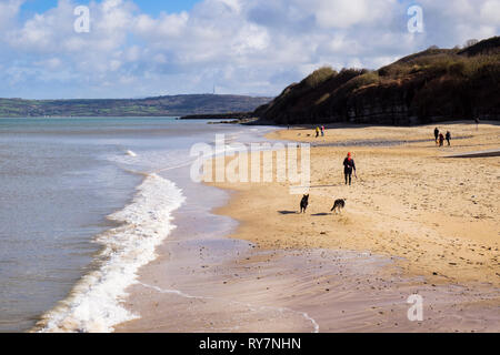 Dog walkers on the quiet sandy beach in winter sunshine at high tide. Benllech, Isle of Anglesey, North Wales, UK, Britain - Stock Image
