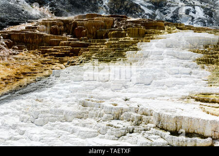 Limestone rock formations at Mammoth Hot Springs in Yellowstone National Park in Wyoming USA. - Stock Image