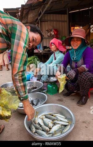 Cambodia, Kampot Province, Kampot, Fish Island Road, small local market, women selling locally caught fish - Stock Image
