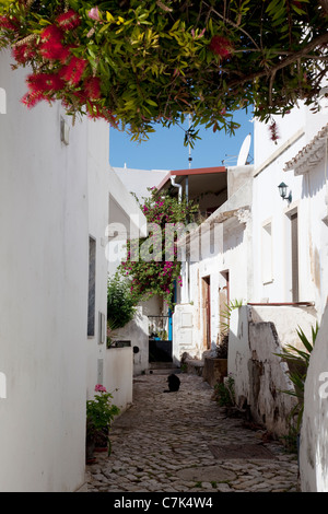 Portugal, Algarve, Alte, Backstreet - Stock Image