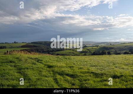 Peak District landscape in the evening - Stock Image