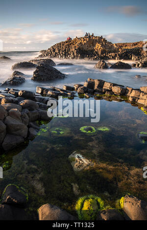 Tourists on the Giant's Causeway in County Antrim, Northern Ireland - Stock Image