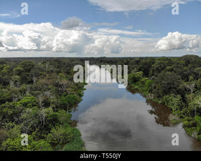Aerial view of Cano Belludo, tributary of the Ucayali River - Stock Image