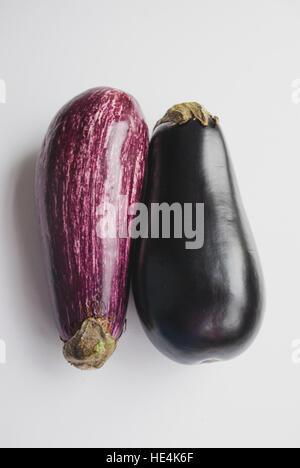 Two purple eggplants aubergines on white background - Stock Image