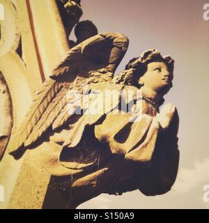 Angel on gravestone - Stock Image