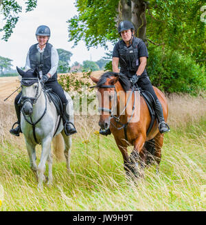 Two ladies out riding horses on a summers day - Stock Image