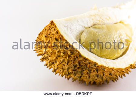 durian or king of fruits with thorns skin isolated white background - Stock Image
