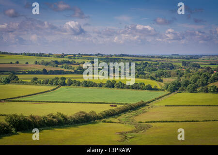 Lincolnshire wolds in summer - Stock Image