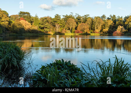 Autumn colours in late afternoon over a lake at Mount Stewart, Newtownards, County Down, N.Ireland. - Stock Image