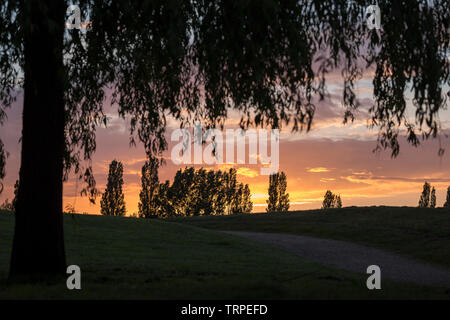 Evening sunset sky in UK country park. - Stock Image