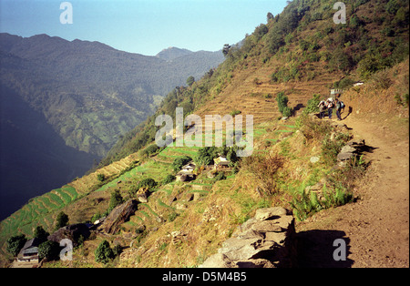 Track above terraced fields and farms on steep sided Modi Khola valley on Annapurna Circuit Nepal Himalayas - Stock Image