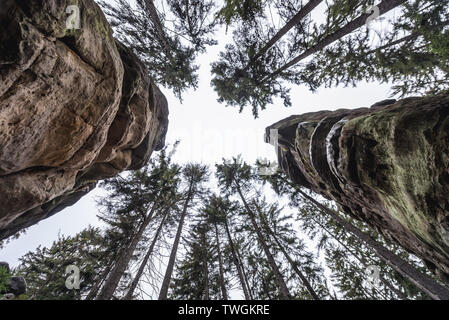 Rock towers in Ostas Nature Reserve in Table Mountains range in Czech Republic - Stock Image