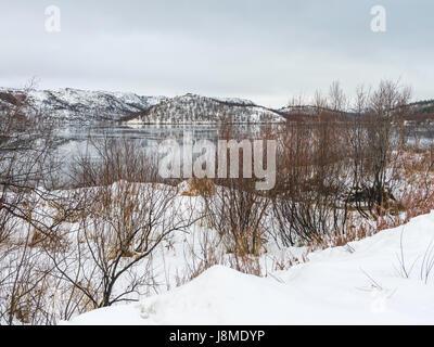 Norwegian landscape near the border between Norway and Russia near Kirkenes, Finnmark County, Norway - Stock Image