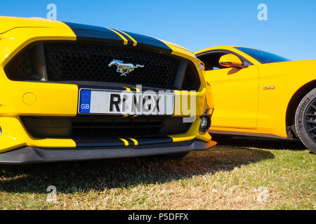 2 cool fast cars, 2 European right hand drive Ford Mustang 5 litre V8 GT Fastback Auto cars - Stock Image