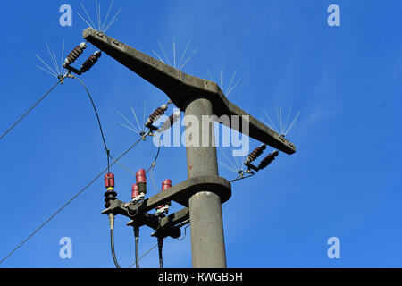 Transmission tower equipped with deflectors to prevent large birds from landing here and thereby suffer a mostly deadly electric shock. Bavaria, Germany - Stock Image
