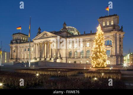Berlin Reichstag in winter , christmas tree, Tiergarten, Berlin - Stock Image