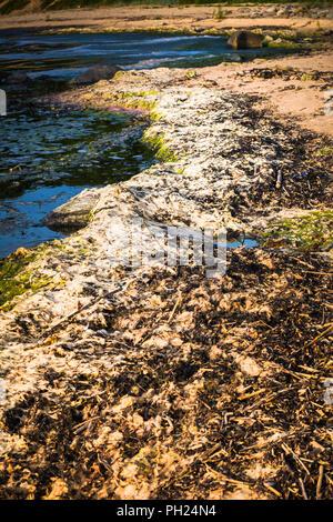 Dirty beach - Stock Image