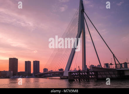 Erasmusbrug (Erasmus Bridge) at sunset, Rotterdam, The Netherlands. - Stock Image