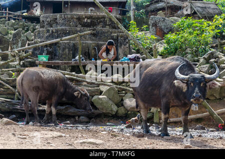 Women washing clothes in their village in the coutryside around Phongsali, Laos - Stock Image