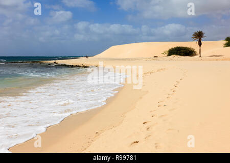 Footprints along the shoreline of quiet white sandy beach to a palm tree and sand dunes. Praia de Chaves, Rabil, Boa Vista, Cape Verde Islands, Africa - Stock Image
