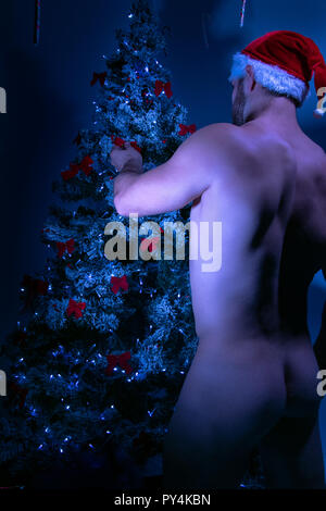 Handsome naked male santa with bare backside decorates christmas tree in just his hat - Stock Image