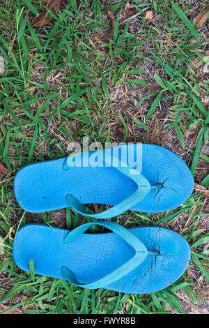 Worn out blue thongs or flip flops against worn down lawn grass. - Stock Image