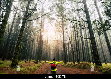 Standing woman with opened arms for happiness satisfaction success concept in the middle of high trees forest wood during trekking outdoor leisure act - Stock Image