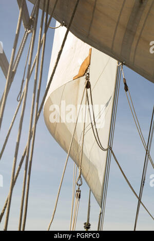 Sails on board the tall ship Lord Nelson - Stock Image