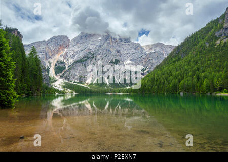 Reflection, Lago Di Braies, Lago Di Braies, Seekofel, Dolomites, Alps, Italy, Europe - Stock Image