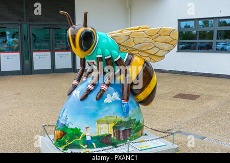 I'd Rather Bee Cycling, by Jessica Perrin.  One of the Bee in the City sculptures, at the National Cycling Centre, Clayton,  Manchester, UK. - Stock Image