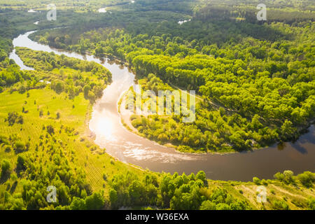 Beautiful forest with a winding river. Aerial view on a bright summer day - Stock Image