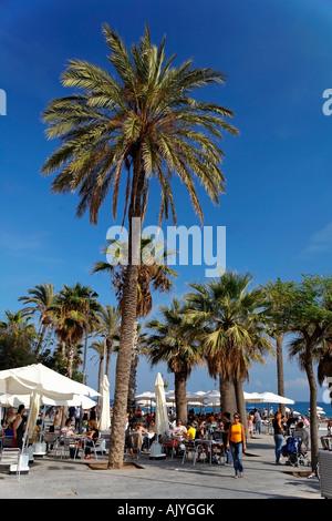 Spain Barcelona beach Platja de la Barceloneta street cafe palm trees - Stock Image