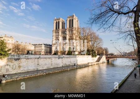 Notre Dame de Paris, France - Stock Image