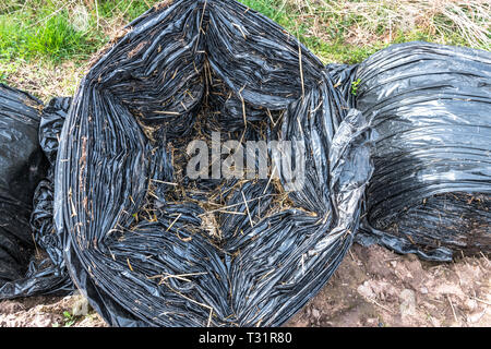 Farming waste of black plastic sheeting left at the side of a field. - Stock Image